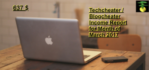 Income report of a blog
