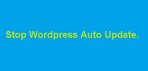 Stop Wordpress Auto update