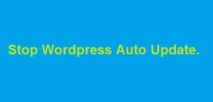 Stop Wordpress Auto update